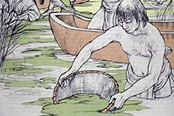 Raccolta al tempo degli Aztechi