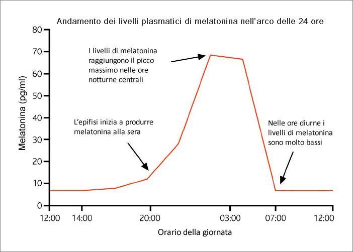 Grafico produzione di Melatonina