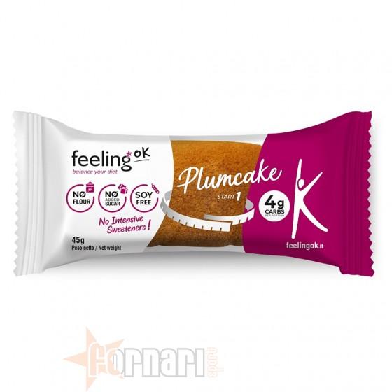 Feeling Ok Start Plumcake 45 gr