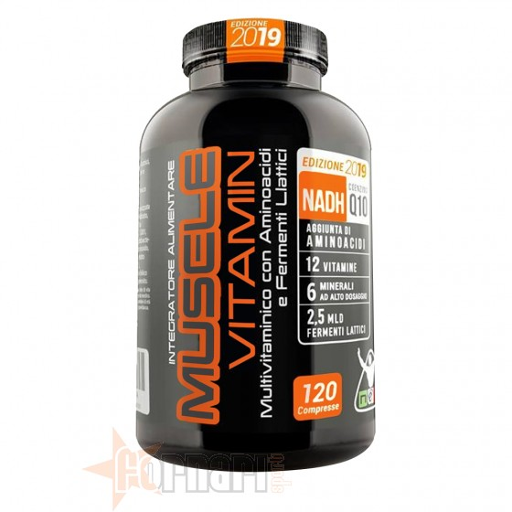 Net Muscle Vitamin 2019 120 cpr