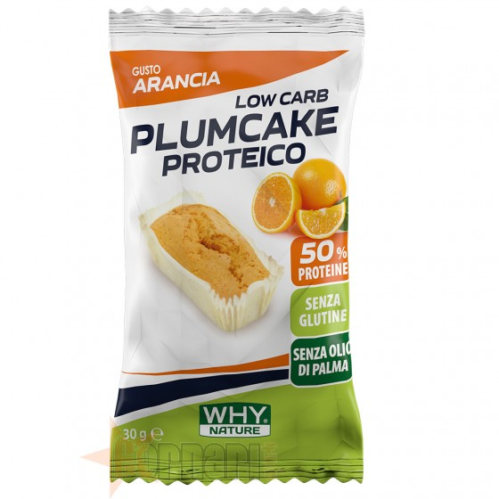 Why Nature Plumcake Proteico 30 gr