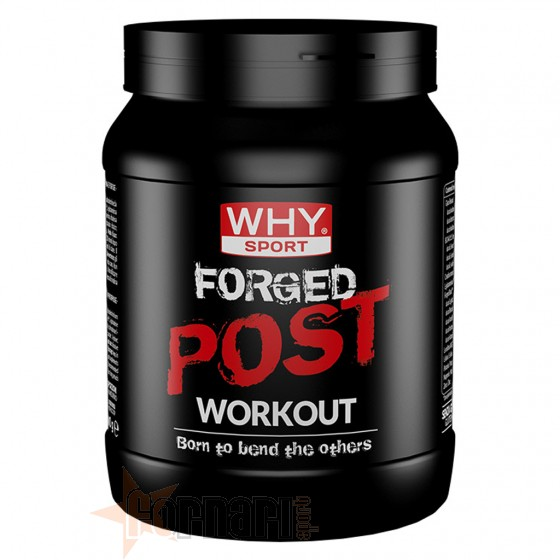 Why Sport Forged Post Workout 600 gr