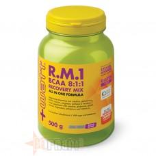 +WATT RM1 BCAA 8:1:1 RECOVERY MIX 500 GR