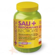 +WATT SALI + PERFORMANCE ELECTROLYTE 500 GR