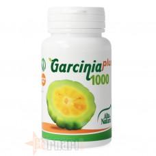 ALTA NATURA GARCINIA PLUS 1000 60 CPR