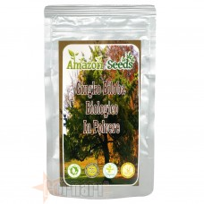 AMAZON SEEDS GINKGO BILOBA BIOLOGICO IN POLVERE 100 GR