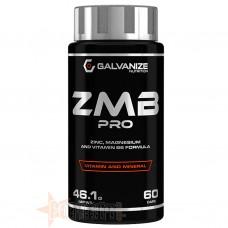 GALVANIZE NUTRITION ZMB PRO 60 CPS