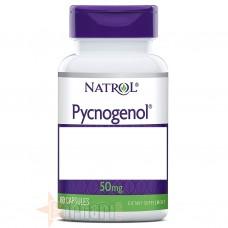 NATROL PYCNOGENOL 60 CPS