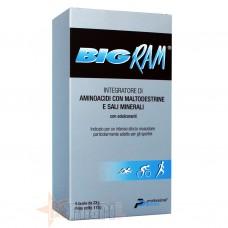 PROFESSIONAL DIETETICS BIG RAM 5 BUSTE