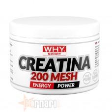 WHY SPORT CREATINA 200 MESH 200 GR