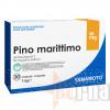 YAMAMOTO PINO MARITTIMO 30 CPS